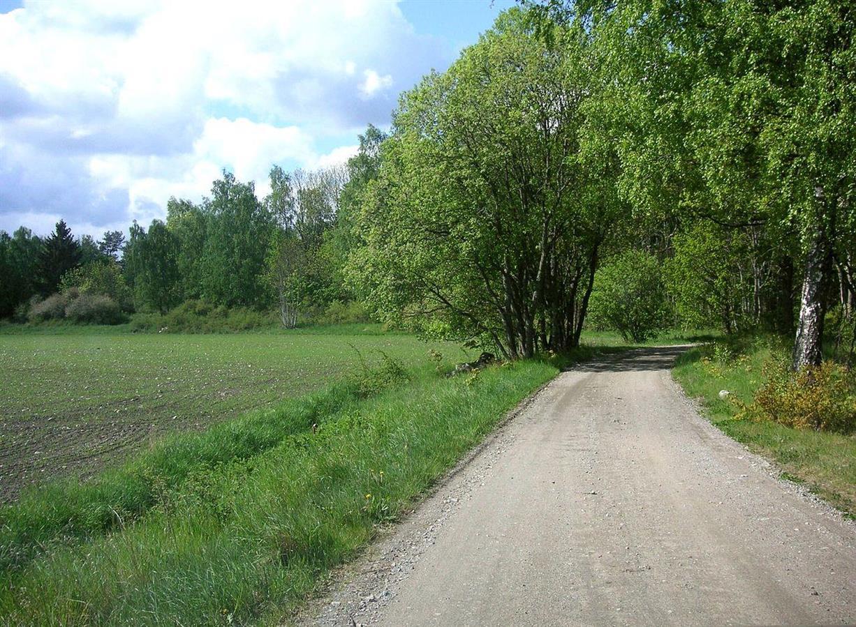 Så här lugn var trafiken förr på Gamla Göta Landsväg
