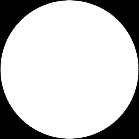 Pigment 5ml, K105 vit