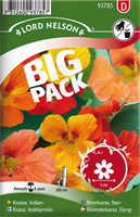 Krasse, Slinger-, bl färger Big Pack