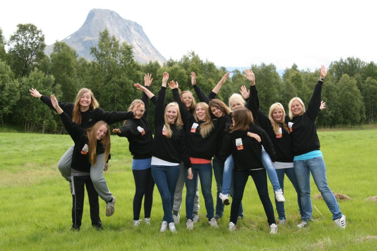 Aktive medlemmer 2011