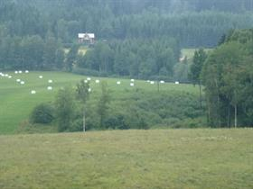 140715 Före Fräsning vid Angersby gård