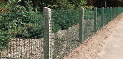 Trädgårdsnät 100cm 25m Grön