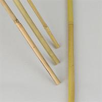 Bambukäpp 100cm 10-p