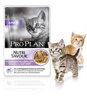 ProPlan Cat Junior Turkey Wet 10-p