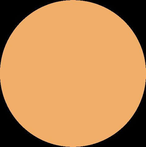 Pigment 5ml, K102 orange
