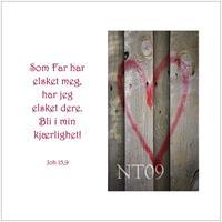 Postkort Joh 15,9