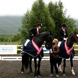 Vinnerne NNM dressur klubblag 2012 hest - NORD