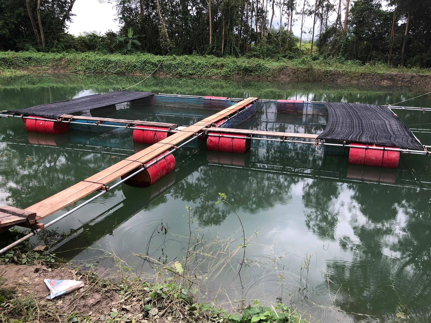 Fiskeoppdrett.