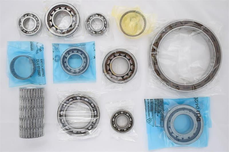 KIT DE ROULEMETS - Clio S1600 set of bearings,bushes and needle