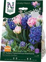 Tulp/Hyac/Anem LM Romantic Garden