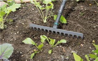 NatureLine Trädgårdskratta 36cm