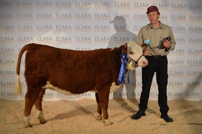 Framgångar på Elmia