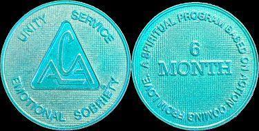6 månaders medalj