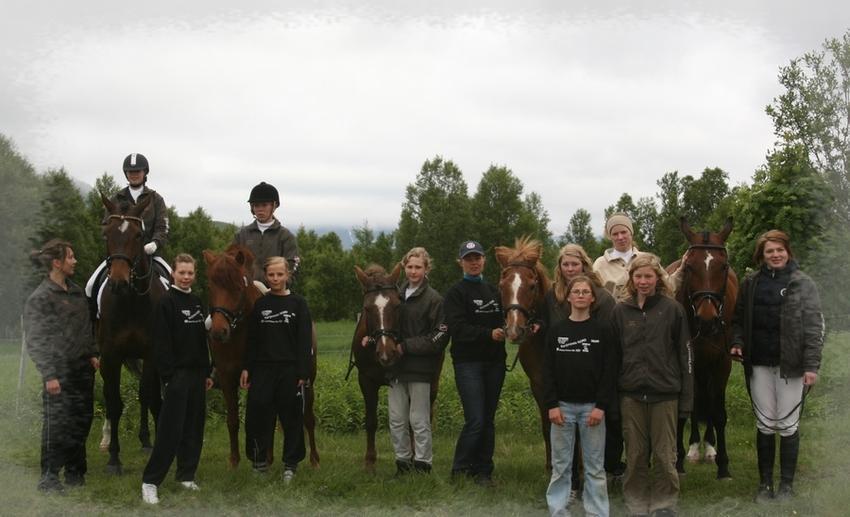 Aktive medlemmer 2008