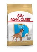RC Boxer Puppy 12 kg