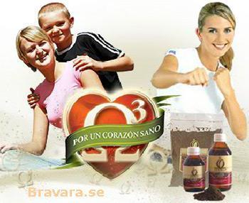 bravara.se