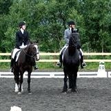 Hammerfest Rideklubbs hestelag