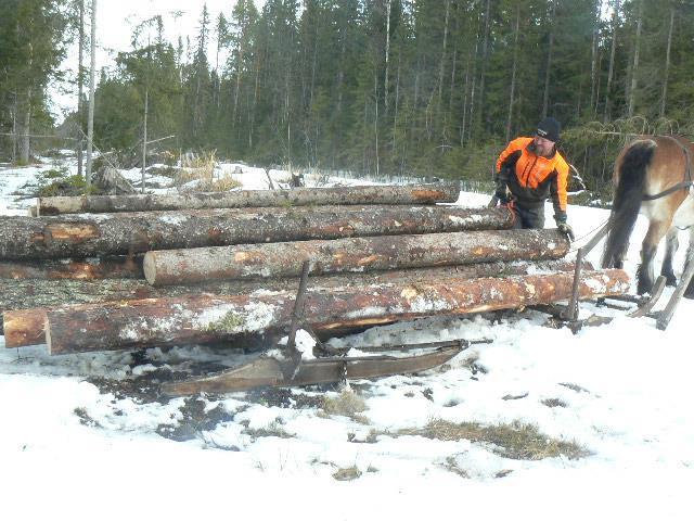 skogskörning