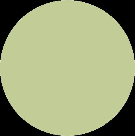 Pigment 5ml, K104 ljus oliv