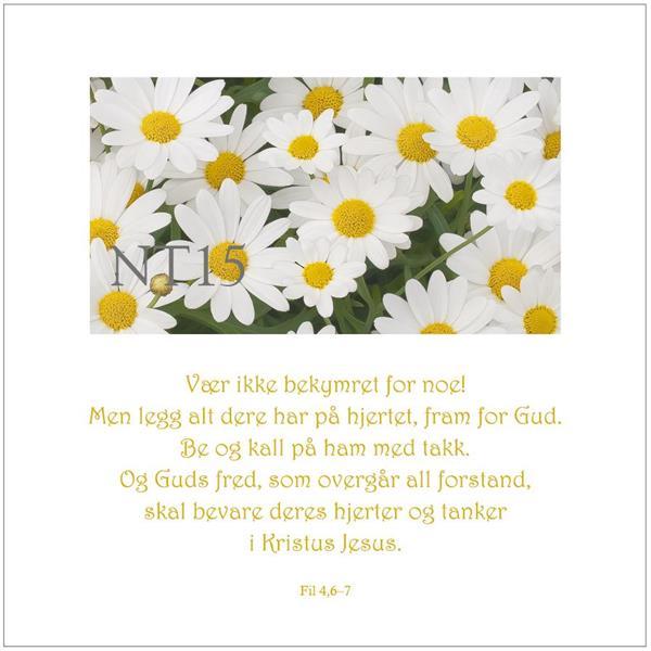 Postkort Fil 4,6-7