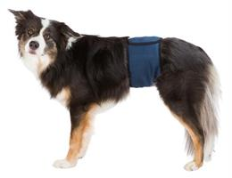 Hanhundsskydd Mörkblå S/29-37cm