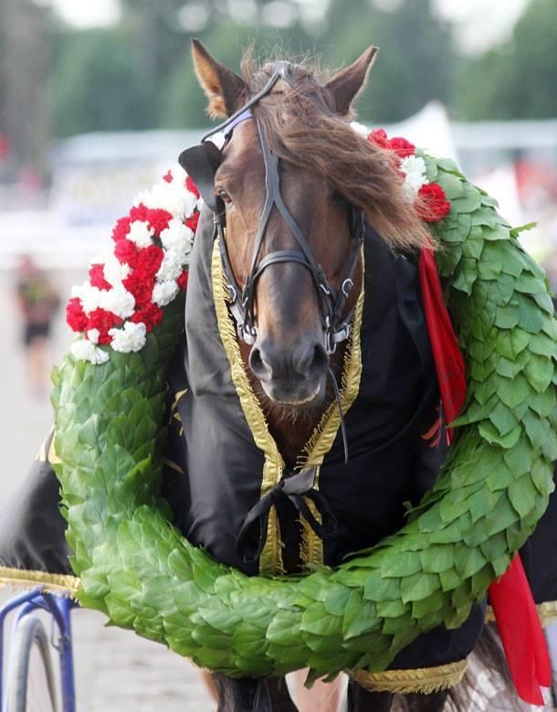 Vinnaren av Kings Race och årets häst i Finland 2014