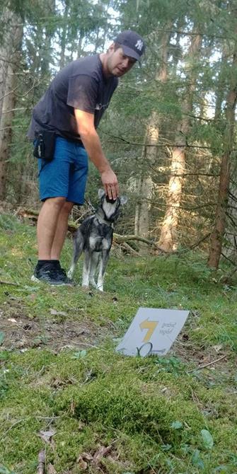 Rallylydnad i skogen för träna miljö