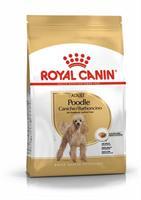 RC Poodle Adult 1,5 kg