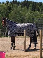 Källqvist Flugtäcke Zebra