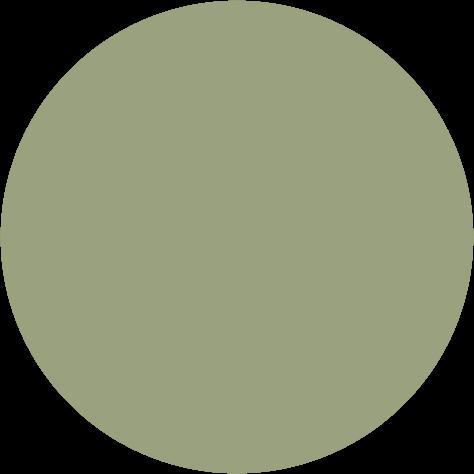 Pigment 5ml, K101 oliv