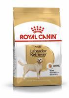 RC Labrador Retriever Adult 12 kg