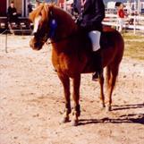 Trine og Mikko, bronse KM 2002