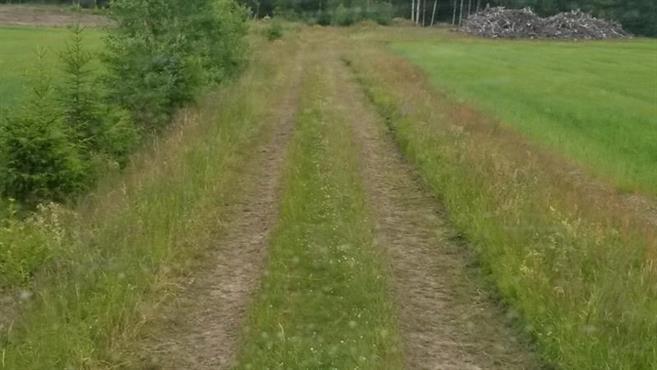 Djupa hjulspår på traktorväg