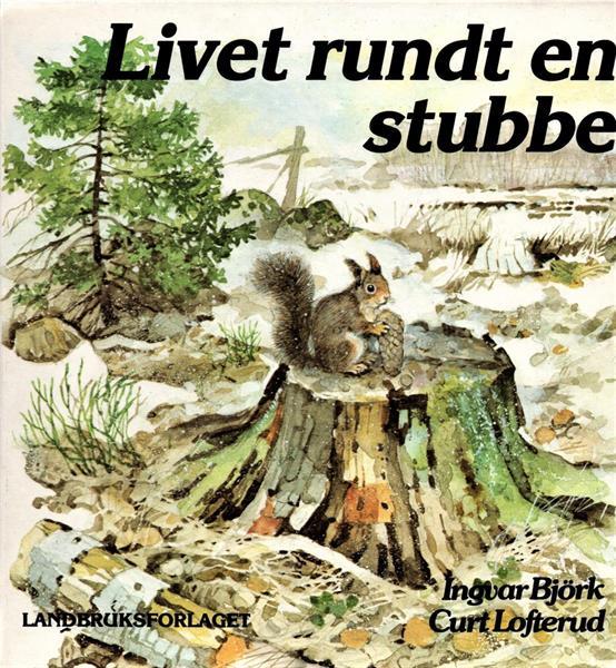 Livet rundt en stubbe