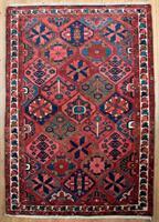55861 Bakhtiar 218 x 155