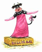 Rosa på bal 7x9