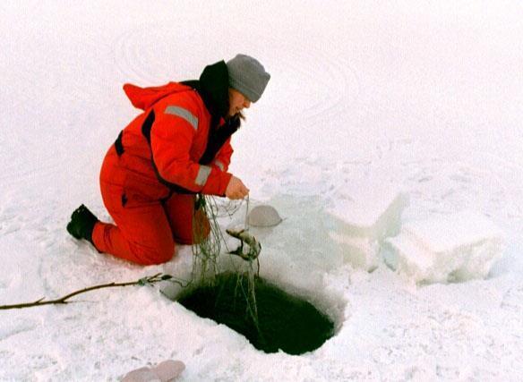 Isfiske på julafton. Kallt, man vad gör man inte för färsk fisk på julafton? Året var 2000.