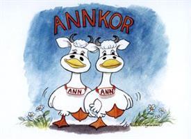 Annkor 7x9