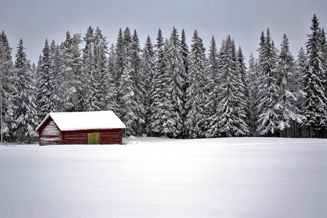 Foto Mattias Backström