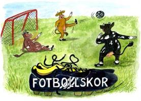 Fotbollskor 7x9