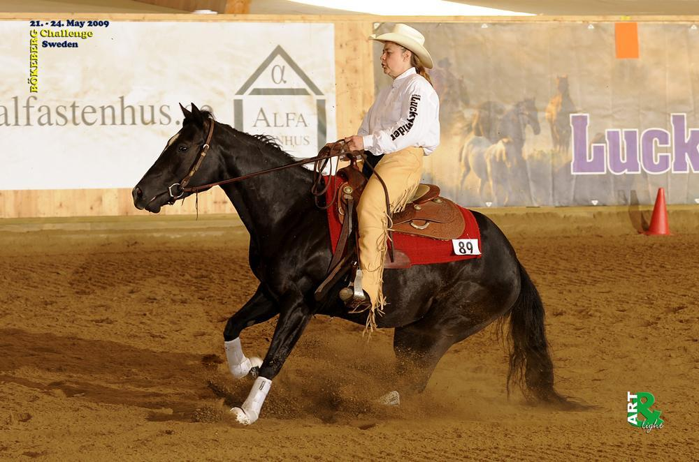 Oaks Paula Quixote