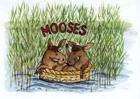 Mooses 7x9