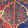 1168 Bakhtiar  202 x 139