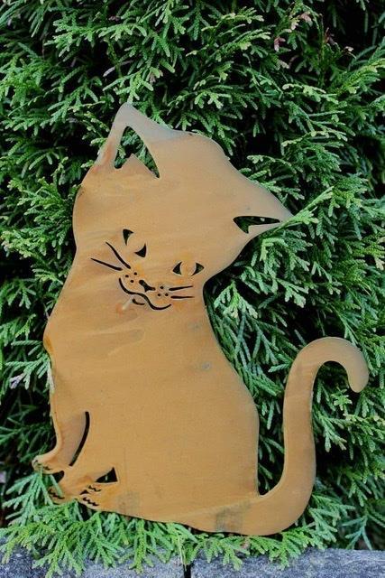 Katt Tussie