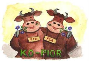 Ko-pior 7x9