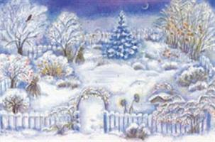 Puutarha jouluyönä-adventtikalenteri