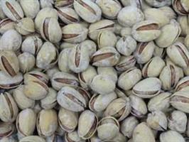 Pistaasipähkinä paahdettu, suolattu kuorellinen 500 g, luomu