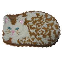 Pantastic Kakeform Katt