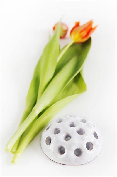 Blomsteroasis i keramik vit