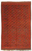 5050 Afghan Chub Bash 236 x 158